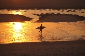 surfer-on-golden-beach-854715_640